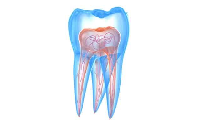 endodoncia monterrey 01 periodoncia e implantes monterrey
